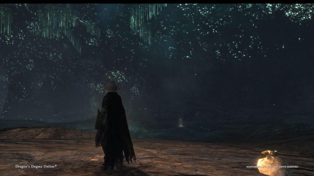 DDON_燐光虫の夜空
